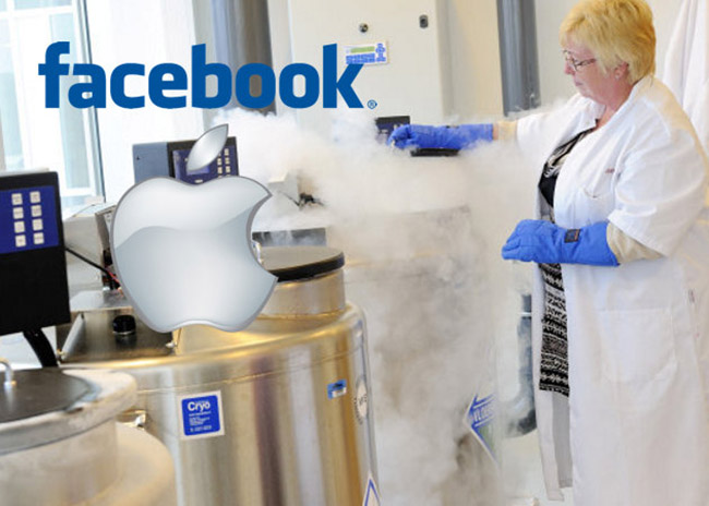 Congelación Social: Los pros y los contras de almacenamiento de ovocitos