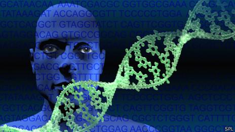 131107154954_genome_dna_464x261_spl