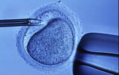 Preservación-fertilidad