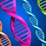 Es hora de hablar de genética