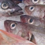 Comer pescado con mercurio podría aumentar el riesgo de un tipo de esclerosis