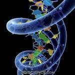 Nueva prueba analiza todos los genes de Identificación única mutación que causa enfermedades raras