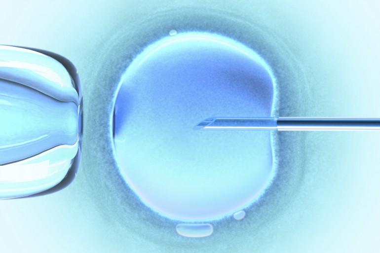 Cómo será el futuro de la medicina reproductiva