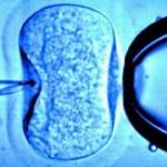 México: Diputados aprueban prisión y multa por técnicas ilegales de reproducción asistida