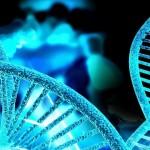 Identifican gen responsable de infertilidad masculina