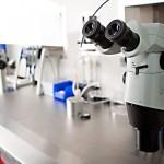 Las pruebas médicas que más se compran por Internet son las de fertilidad masculina