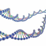 Desarrollo de la genómica, se han establecido secuencias de 7 mil especies