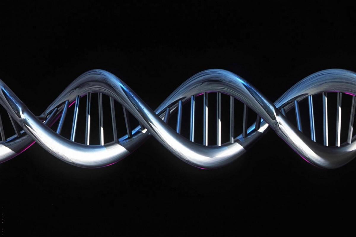 Encuentran proteína que proporciona estabilidad del genoma