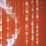 El ADN no es destino: la epigenética y el campo dinámico del ser