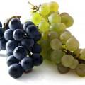 Investigadores españoles estudian la piel de la uva para combatir la infertilidad