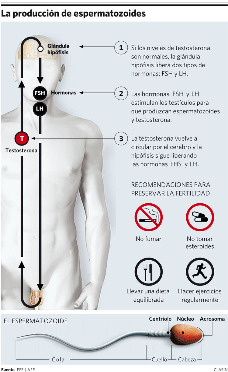 La tromboflebitis del dolor en el alto
