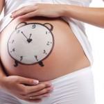 Reproducción asistida: ¿Por qué conviene ser madre antes de los 35?