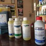 Los plaguicidas, un riesgo para la salud reproductiva de los varones