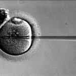Consiguen mejorar la fertilidad de mujeres con cáncer de mama con una combinación pionera de fármacos