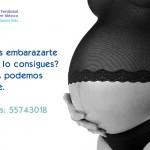 Mutaciones genéticas recién identificados podrían ayudar a explicar la menopausia precoz y la infertilidad