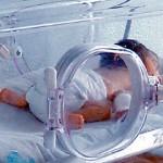 Ya hay bebés por catálogo en México